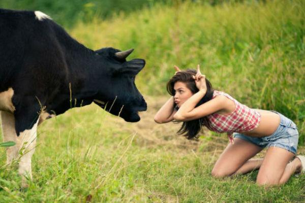 5 фактов о глупости и дураках