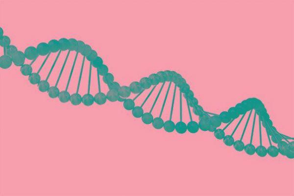 Как гены влияют на характер, интеллект и душевное здоровье