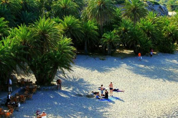 Пальмовый лес Вай, Крит, Греция
