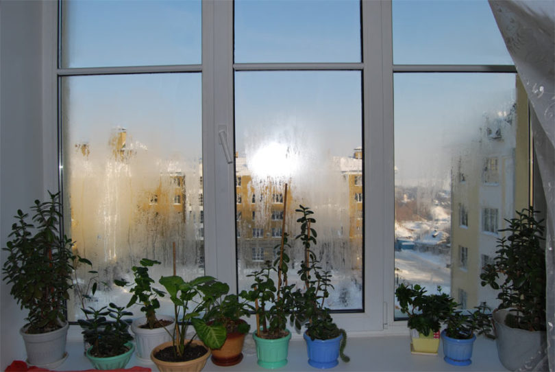 окна потеют